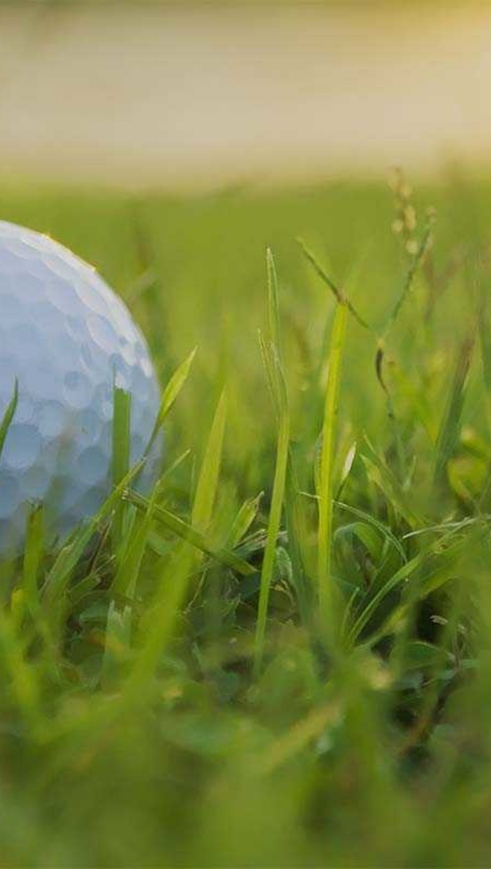 Sadie Golf Tournaments